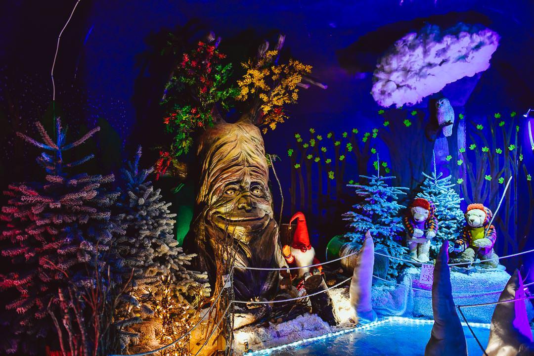 Swansea Winter Wonderland at Gower Fresh Christmas Trees