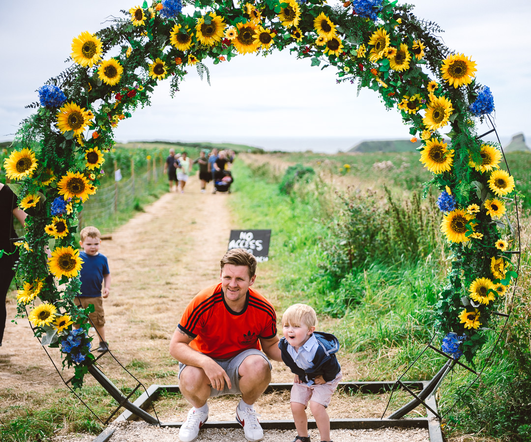 Rhossili Sunflowers-Gower Fresh Christmas Trees-5
