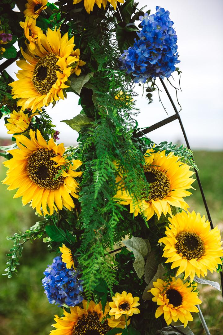 Rhossili Sunflowers-Gower Fresh Christmas Trees-6