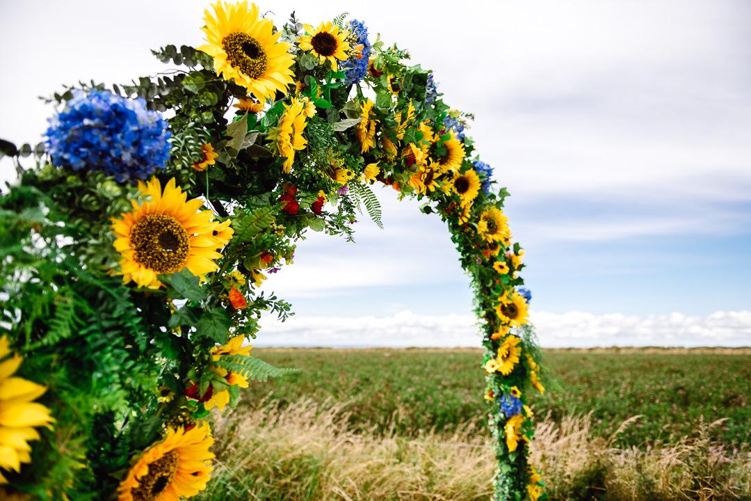 Rhossili Sunflowers-Gower Fresh Christmas Trees-7