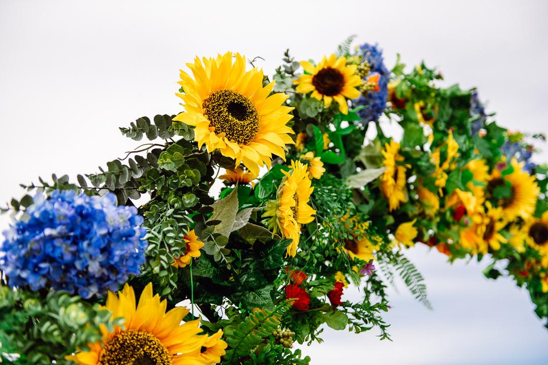 Rhossili Sunflowers-Gower Fresh Christmas Trees-8